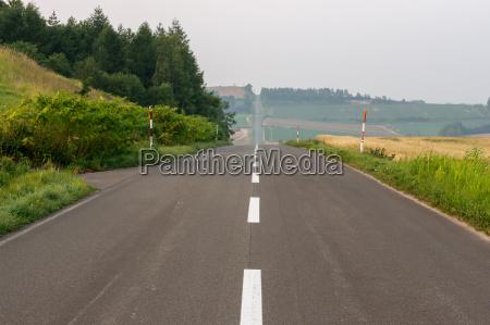 rollercoaster road