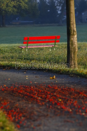 germany red bench in autumn