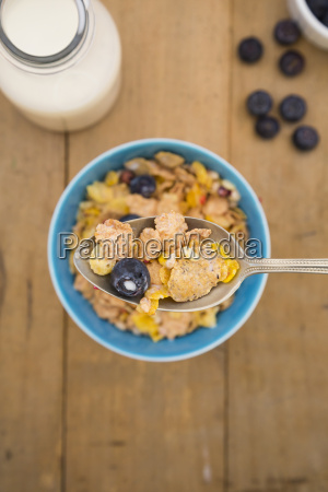 glutenfree muesli with blueberries
