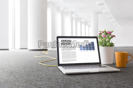 laptop with annual report flowerpot and