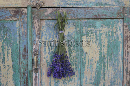 bunch of lavender hanging on wardrobe