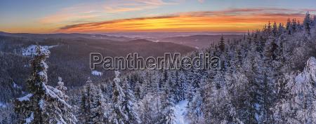deutschlandsachsen anhaltnationalpark harzlandschaft im winter bei