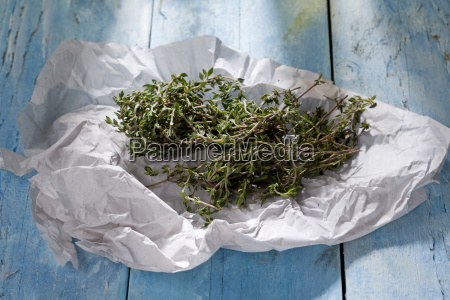 thyme on paper