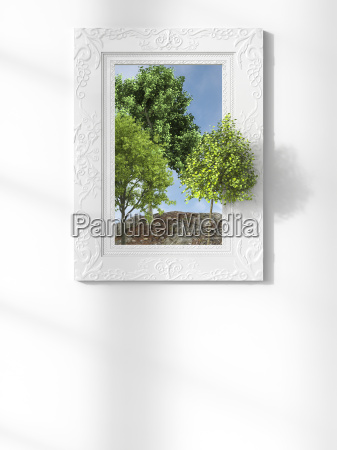 green tree emerging from picture frame