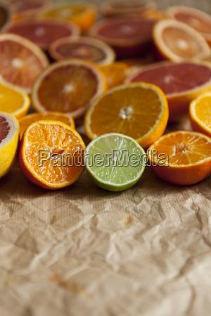 halves of different citrus fruits on