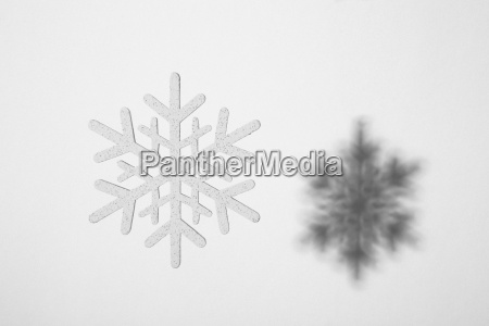close up of snowflake and its