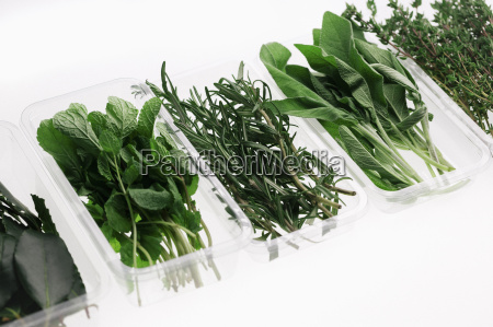 variety of herbs in containers on