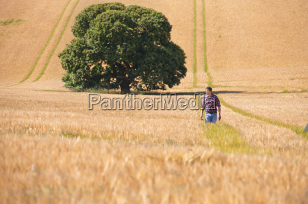 farmer walking in sunny rural barley
