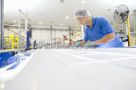 technician worker arranging solar cells to