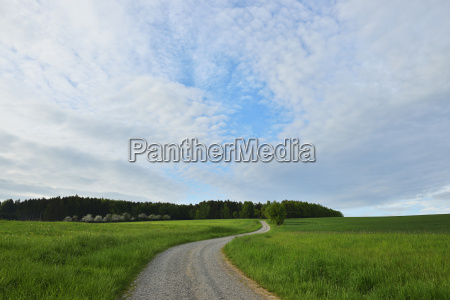 winding gravel road in countryside in