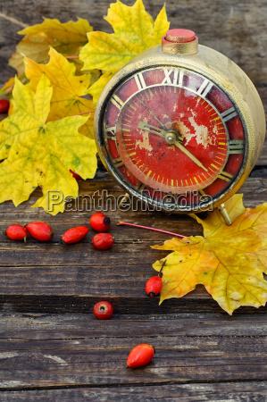 autumn still life with clock