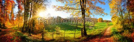 zauberhafte landschaft im herbst sonniges panorama
