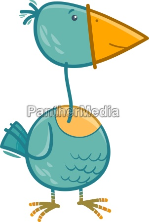 bird cartoon illustration