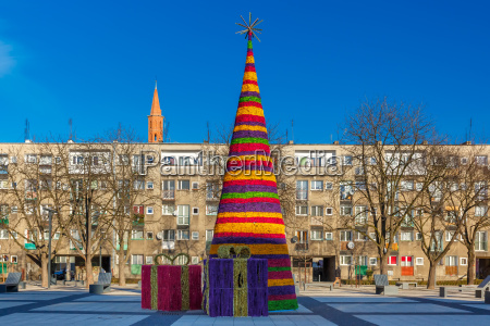christmas tree in wroclaw poland