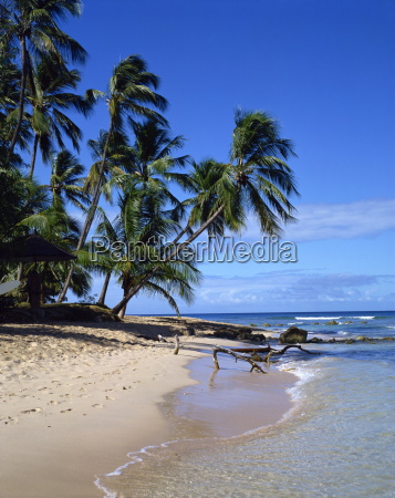 barbadoswest indieskaribikmittelamerika