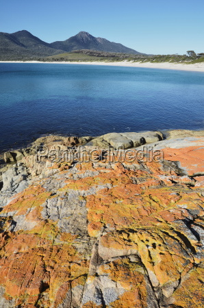 red lichen on rocks wineglass bay
