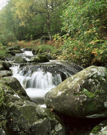 barrow beck and autumnal foliage near