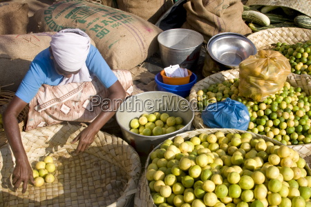 lemons for sale chalai trivandrum kerala