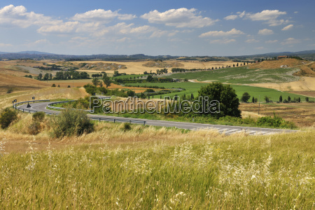 tuscany countryside in the summer asciano