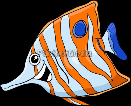 exotic fish cartoon character