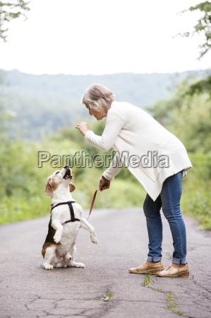 senior woman teaching her dog