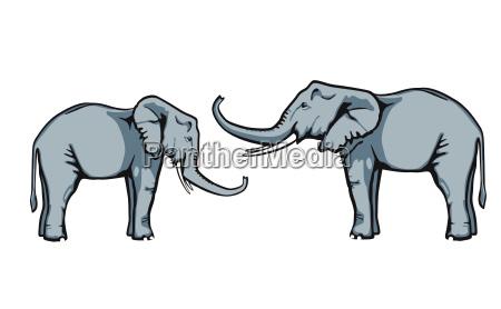 freundliche elefanten vertrauen sich