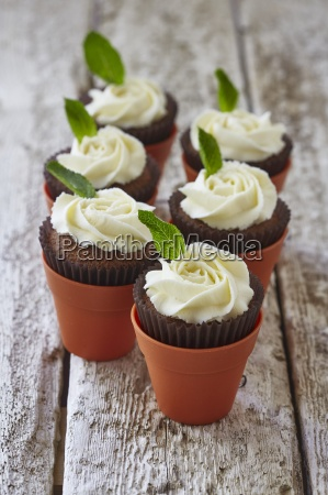 chocolate cupcakes with buttercream roses and