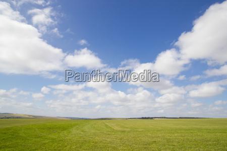 landwirtschaftlich landwirtschaft ackerbau feld sommer sommerlich