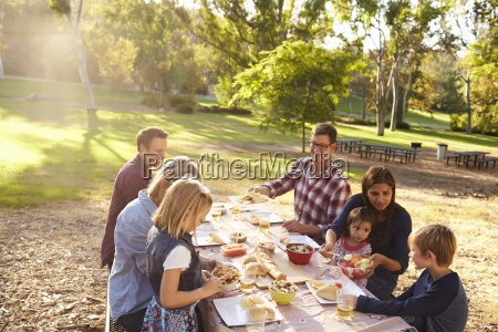 two families having a picnic together