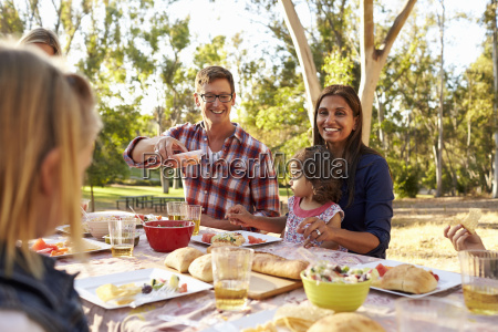 two families having a picnic in