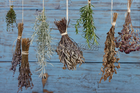 herbs hanging out to dry