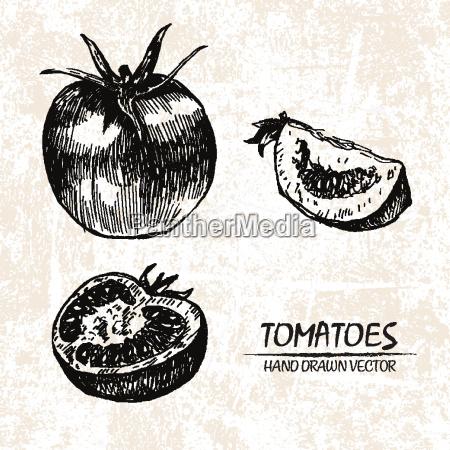 essen, nahrungsmittel, lebensmittel, nahrung, blatt, baumblatt - 20608639