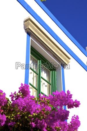 fahrt reisen architektonisch farbe blume pflanze