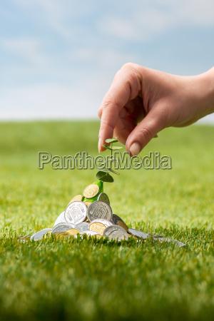 coins on grass