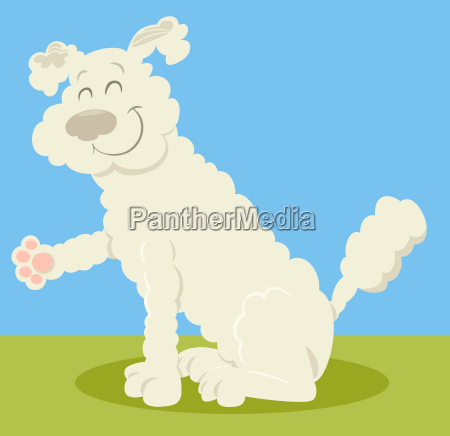 white poodle dog cartoon