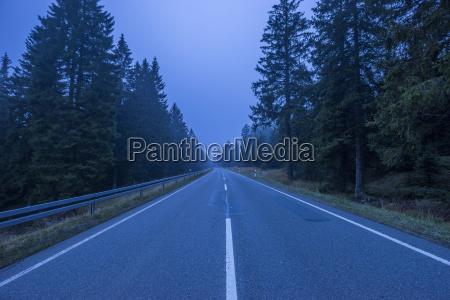 germany lower saxony misty road through